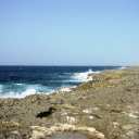 Bonaire's Northeast Coast