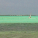 Windsurfing Lac Bay Bonaire